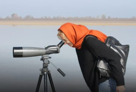 Iran Bird Watching Tours