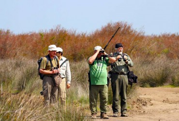Iran Birdwatching and Nature tour Book on SURFIRAN