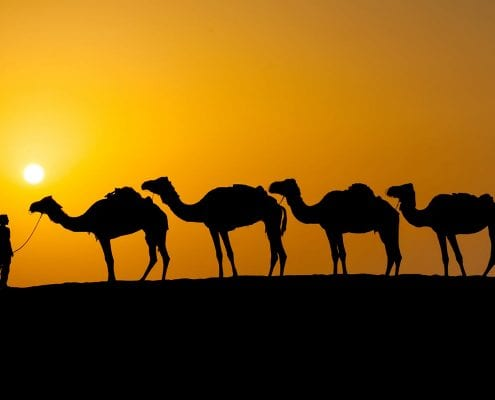 Iran Silk Road Tour Travelling through the desert of Iran with a camel