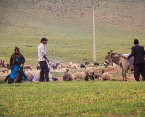 Iran Nomad Tour – Living with the Qashqai Tribes, Iran