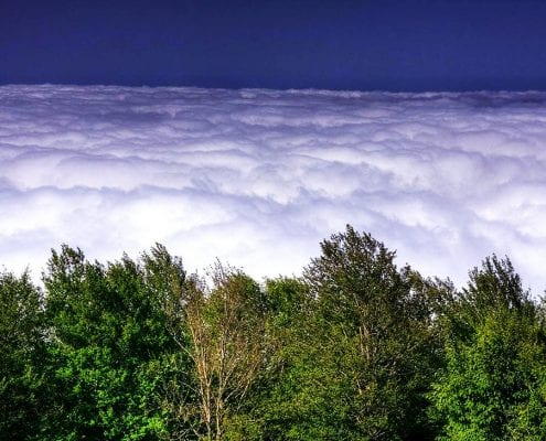 Jangal-e Abr (literary meaning Cloud Forest), Alborz mountain range, Iran