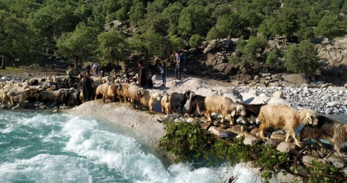 5 Reasons Nomads are Worth Visiting