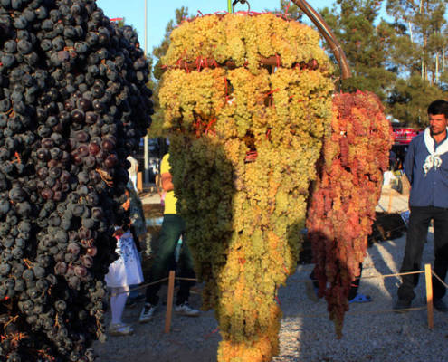 The Grapes Festival in Iran